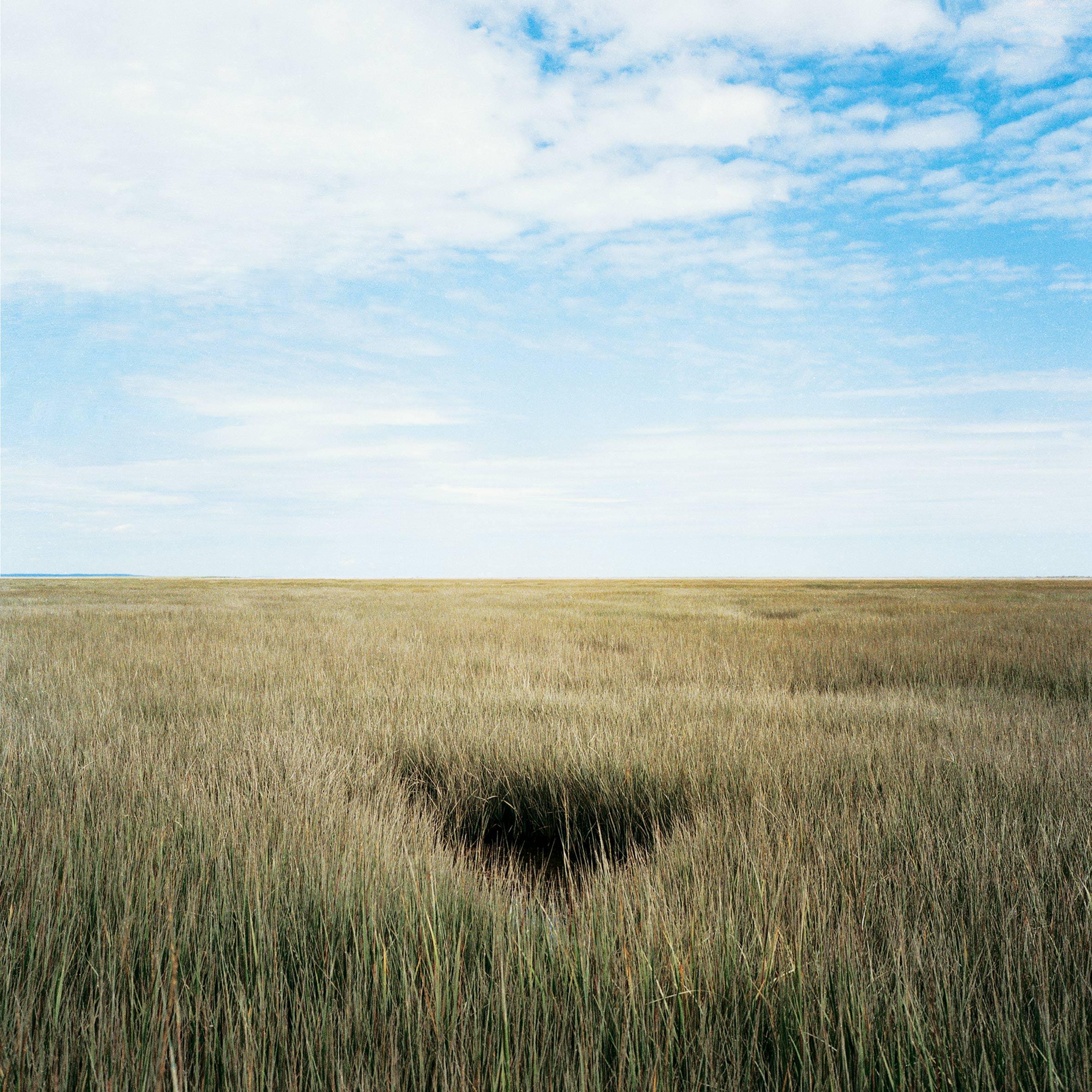marcher créer, périple autobiographique, territoire du Labrador au Québec, paysage, paysage désertique, paysage de campagne, herbe, mer, ciel