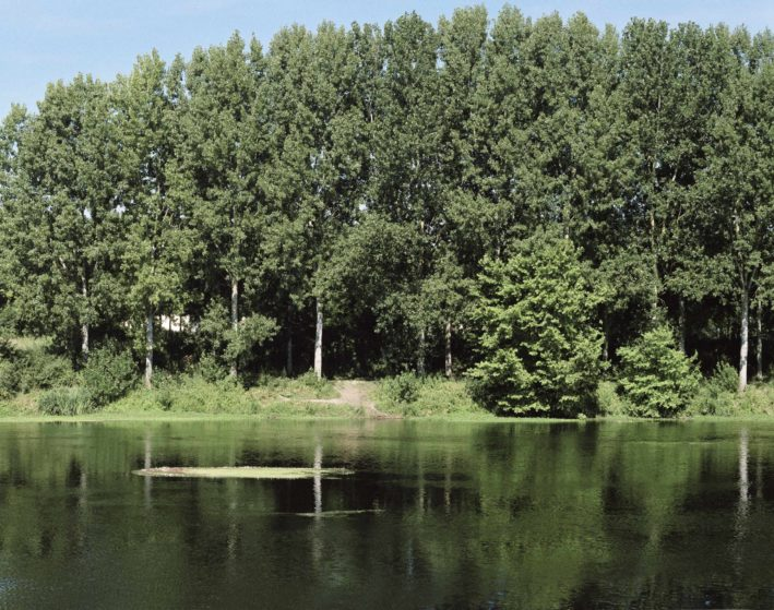 marcher/créer, déambuler, parcourir, photographier, paysage urbain, paysage périurbain, paysage de la campagne, territoire du Poitou-Charente, la ligne acadienne, centre d'art contemporain de Châtellerault, La Vienne,