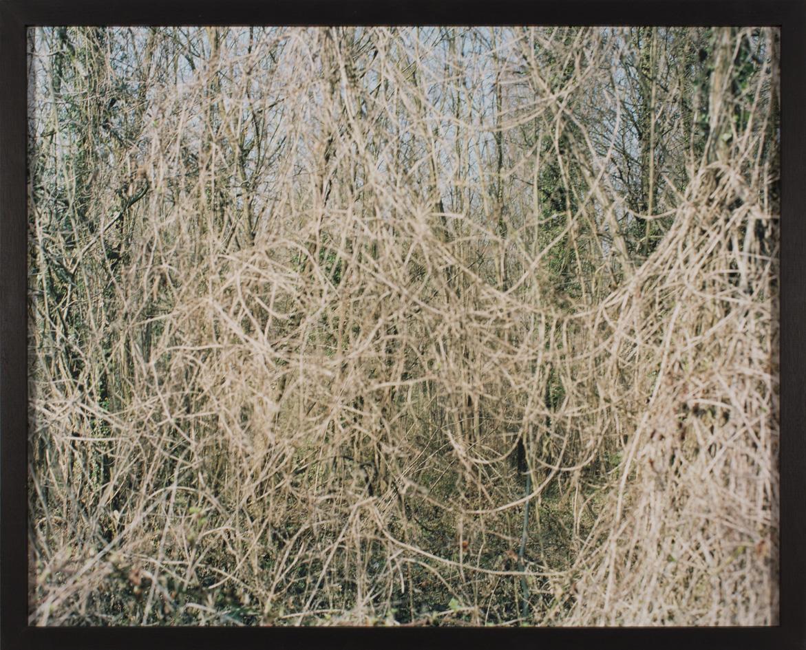 marcher/créer, déambuler, parcourir, photographier le paysage, photographier le territoire, paysage urbain, paysage périurbain, paysage de campagne, paysage architecturale, territoire de la région île-de-France, regard sur le Grand Paris, seine-et-marne,